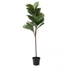 نبات زينة اصطناعي  للأماكن الداخلية/الخارجية نبات فيكس ليراتا 145 سم