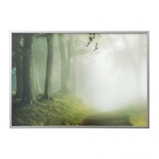 صورة بإطار طريق الغابة لون ألومنيوم