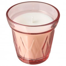 شمعة معطرة في كأس الفراولة البرّية, زهري غامق