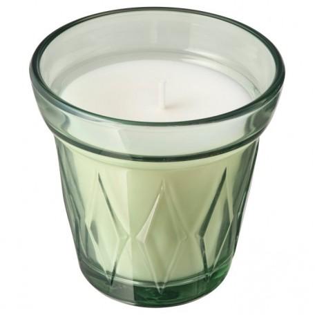 شمعة معطرة في كأس ندى الصباح, أخضر فاتح