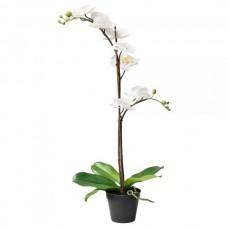نبات زينة اصطناعي ابيض 65 سم